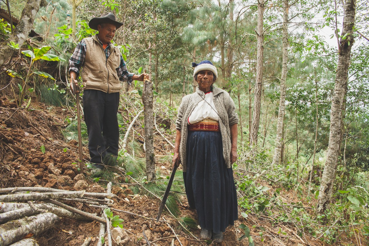 A grandfather and grandmother work to clear some land in the woods. In Mixe culture, it is seen as important to be active in daily life no matter what age they are.